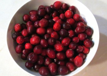 chirstmas-holiday-potpourri-cranberries